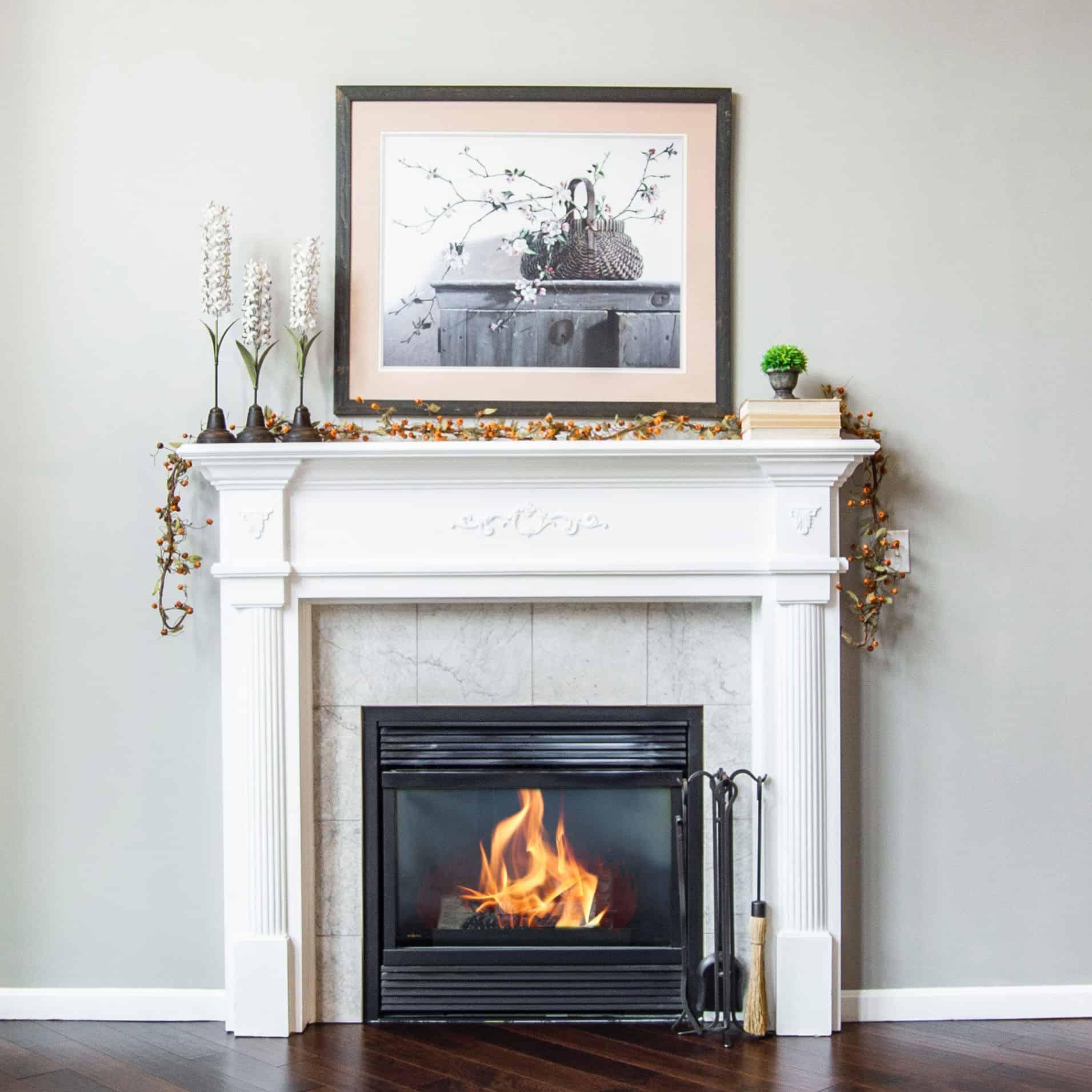 inset log burning multifuel stove